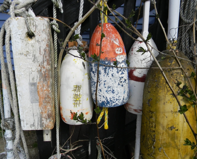 Buoys at the Ramp CPorpoise